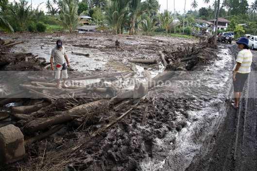 Puluhan hektar sawah rusak akibat terendam lumpur setinggi sekitar satu meter.