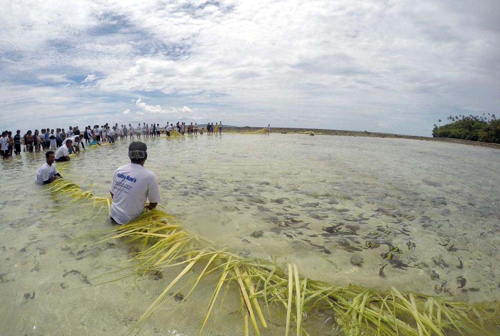 Warga bersiap menangkap ikan yang sudah terkurung di sami saat Festival Mane'e digelar di Pulau Intata, Talaud, Sulawesi Utara, Sabtu, 7 Mei 2015.